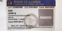 Sample of an Illinois concealed carry license. (Antonio Perez, Chicago Tribune)