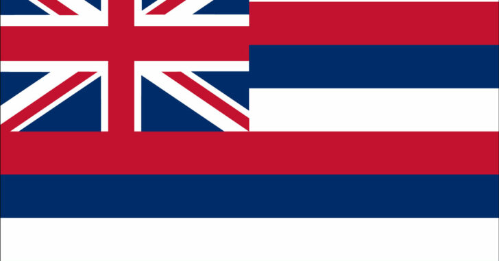 2 Gun Laws In Hawaii Ruled Unconstitutional By Federal District Court