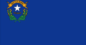 Hey Nevada; Private Gun Sales Are Now Illegal