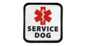 Man Opens Fire on Attacking Animal In Defense of His Service Dog