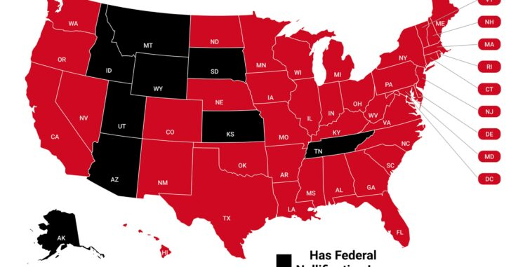 """Understanding The Supremacy Clause & Why """"Federal Nullification Laws"""" Could Land You In Prison"""