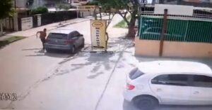 [VIDEO] Armed Driver Prepared For Attempted Ambush