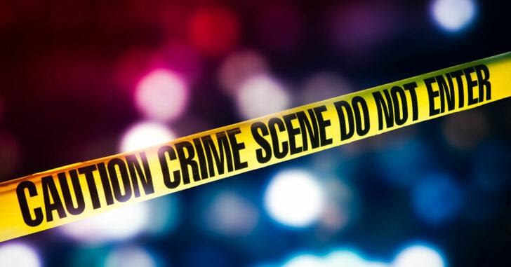 Armed Senior Citizen Fends Off, Shoots Two Attackers In His Backyard