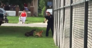 Was This Shooting Of An Aggressive Dog Justified? *WATCH*