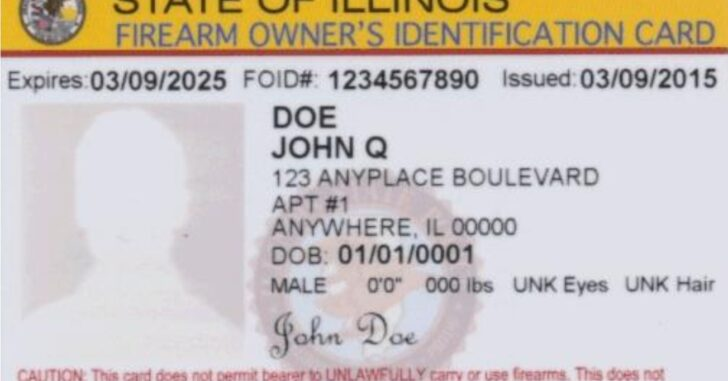 Illinois Judge Rules FOID Card Requirement For Guns In Home Unconstitutional